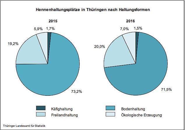 Agrar: Jedes dritte deutsche Ei kommt aus Niedersachsen